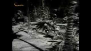 Copia de TODOS A UNA (GUN HO!, 1943, Full movie, Spanish, Cinetel)