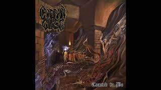 COFFIN CURSE - Where Sickness Thrives