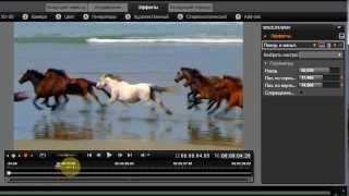 Как масштабировать видео в программе видеоредакторе Pinnacle Studio 16?