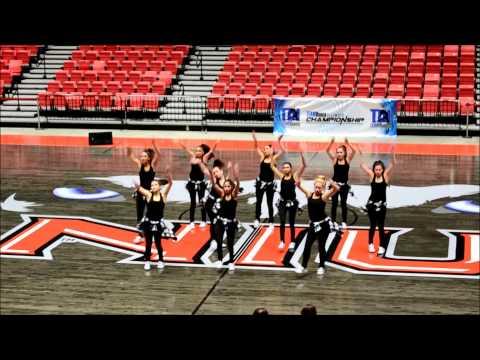 Elgin High School Dance Team State 2015!