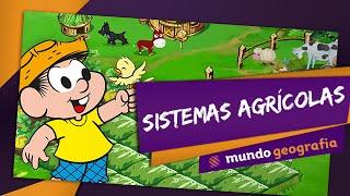 Sistemas Agrícolas - Mundo Geografia - ENEM