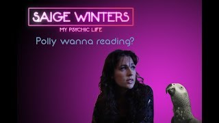 My Psychic Life: Pet Psychic and Fighting Parrots