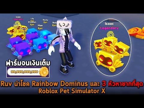 Ruv นำโชค Rainbow Dominus และ 3 หัวหายากที่สุด Roblox Pet Simulator X