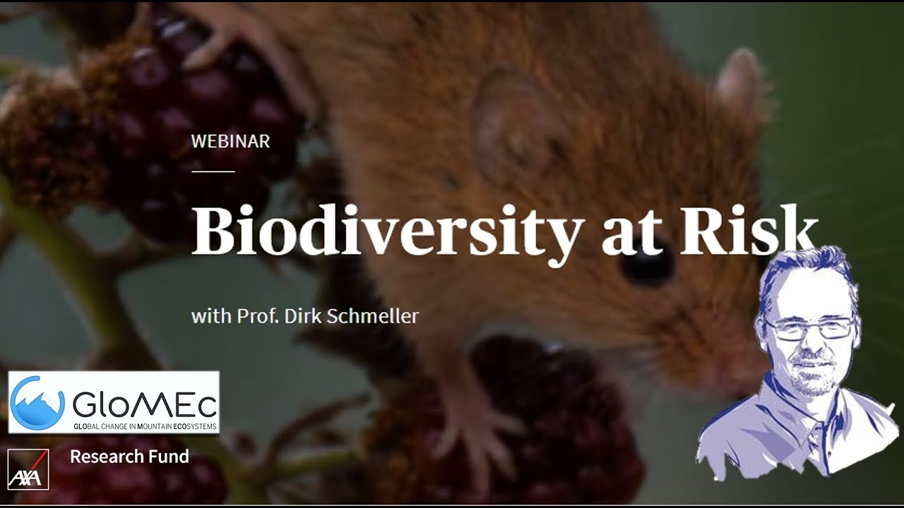 Biodiversity loss, emerging pathogens and human health risks