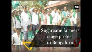 Sugarcane farmers stage protest in Bengaluru