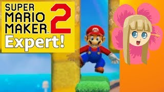 Super Mario Maker 2 Endless Expert - Can I Beat My High Score?