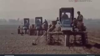 1987 год.  Начало весенних полевых работ в Таджикистане.