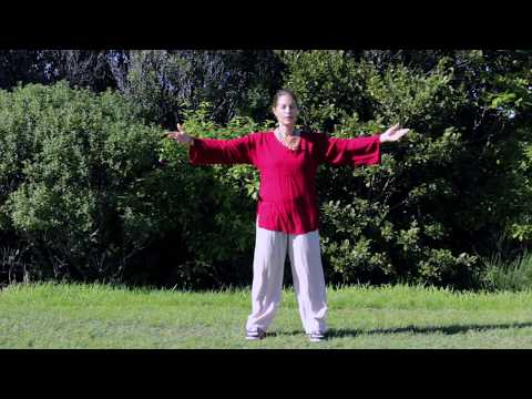 Tai Chi 5 Minutes a Day Module 04 easy for beginners