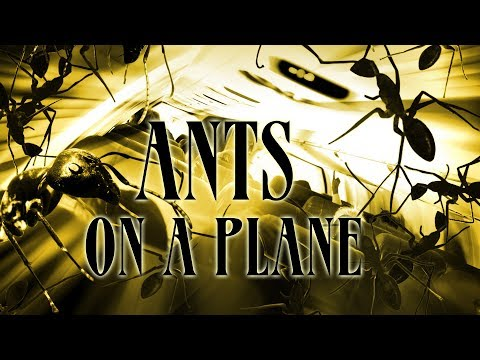Ants On A Plane - Full Movie