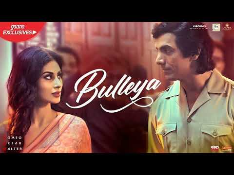 Bulleya Full Song Audio RAW Rabbi Shergil ,Shahid Mallya