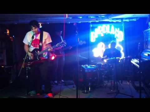 Archipelago Live at Birdland - Black Box