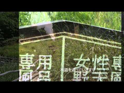 FUKUSHIMA 秘湯 新野地温泉