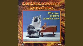 Mustan kissan tango (Volevo un gatto nero)