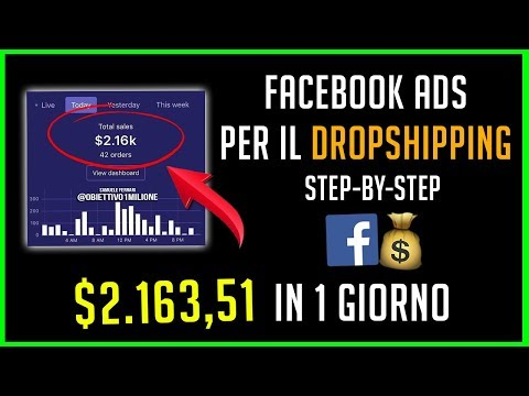 STRATEGIA FACEBOOK ADS PER DROPSHIPPING [STEP-BY-STEP] - $2.163,51 IN 1 GIORNO (DROPSHIPPING ITALIA)