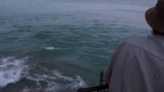 Рыбалка в Абхазии(Рыбалка на побережье возле поселка Багрипш. 20.06.2010., 2010-08-02T09:31:29.000Z)