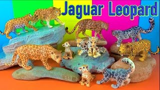 Big Cat Week 2017 - Wild Animals - Leopard Jaguar - Zoo Animals Toys - Learn about Animals