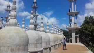 গোপালপুর 201 গম্বুজ মসজিদ