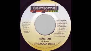 Download Stepping Stone Riddim Mix ★1999★ Buju,Spragga,Assasin+more (Gargamel )by Djeasy MP3 song and Music Video