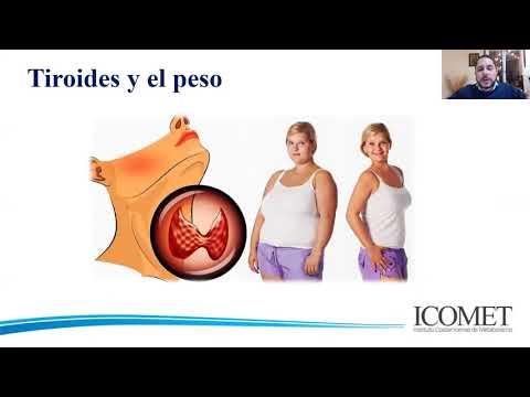 WEBINAR: ¿Mi peso es culpa de la tiroides?
