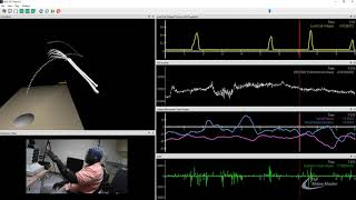 Synchronous EEG, Kinematics and Force Data in The MotionMonitor xGen