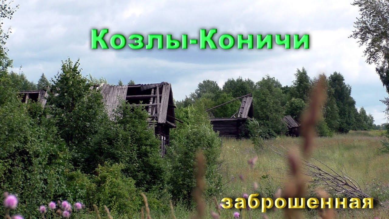 Заброшенная деревня Козлы-Коничи. Целая улица домов.
