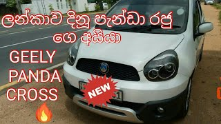Geely Panda next Genaration Panda cross[REVIEW IN SINHALA]