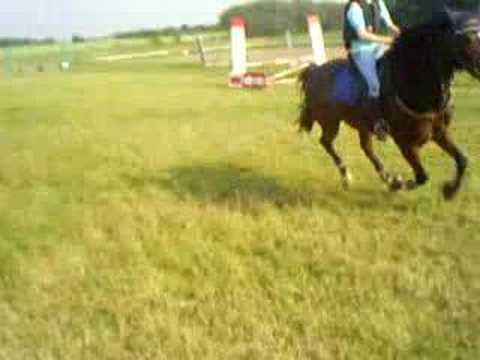 Taj knight Rider