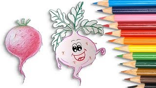 drawing vegetables step easy draw beetroot simple
