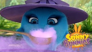 Cartoons for Children | BUNNY WITCHES | SUNNY BUNNIES | Funny Cartoons For Children