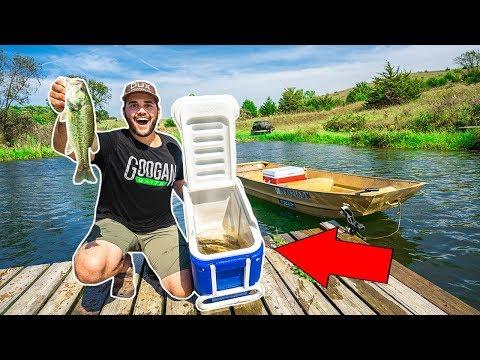 RELOCATING Fish In My BACKYARD POND!!! (STOCKING POND)