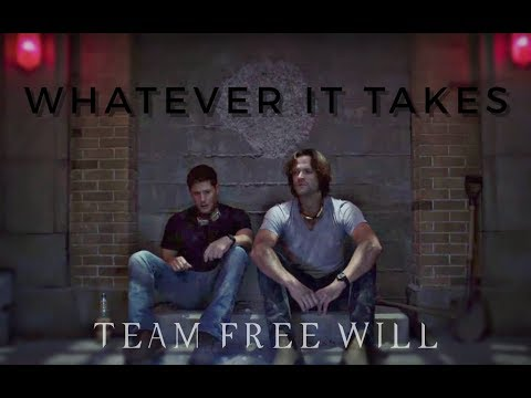 team free will || whatever it takes
