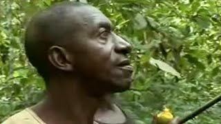 Eating bush meat in Cameroon - BBC Food & Travel