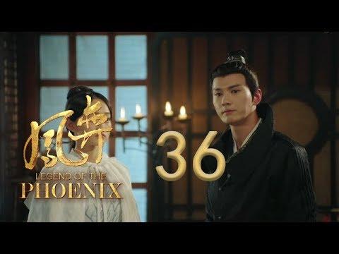 凤弈 36 | Legend Of The Phoenix 36(何泓姗、徐正溪、曹曦文等主演)