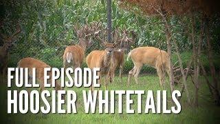 Morrett Whitetails | Pine Creek Deer Farms | Deer & Wildlife Stories