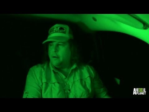 We're Not The Only Ones Here | Finding Bigfoot