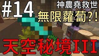 【堯の實況】MineCraft 空島生存 天空秘境三代 EP14 — 無限蘿蔔?! 神農堯救世!解救饑荒