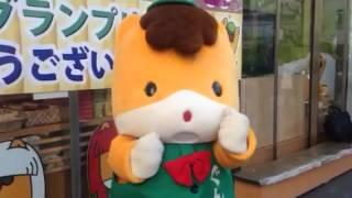 【あったかいんだからぁ】ぐんまちゃんバージョン!!! 星乃みづき 検索動画 28