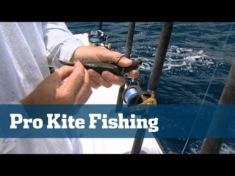 Florida Sport Fishing TV Advanced Kite Fishing Tactics Pros Tip Sailfish Tuna South Florida