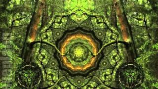 Dark forest SKOKNIPALOKNI Forestdelic Records Series Vol 15 15 12 2015