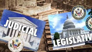 Scholars Edition: Tomiko Brown Nagin, 14th Amendment