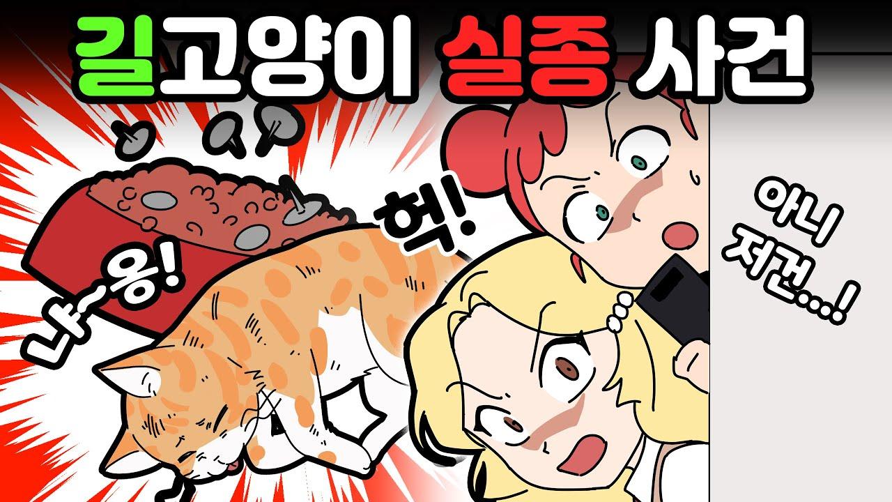 체리툰   길고양이들이 실종됐다?!😨😿   영상툰/썰툰/일상툰   설렘썰/공포썰/고민썰/개그썰