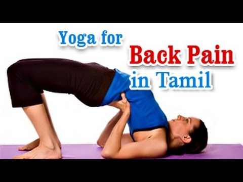 Yoga For Back Pain - Sciatica Pain and Flexibility In Tamil