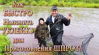 Ловим Уклейку! Как БЫСТРО Наловить Уклейку для Приготовления Шпрот!