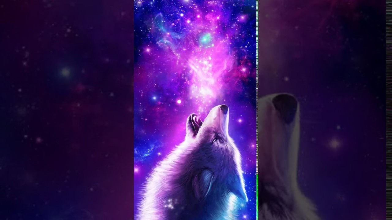 Galaxy Wolf Live Wallpaper Youtube