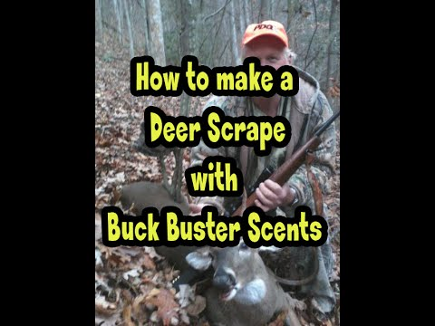 How To Make A Deer Scrape With Buck Buster Deer Scent