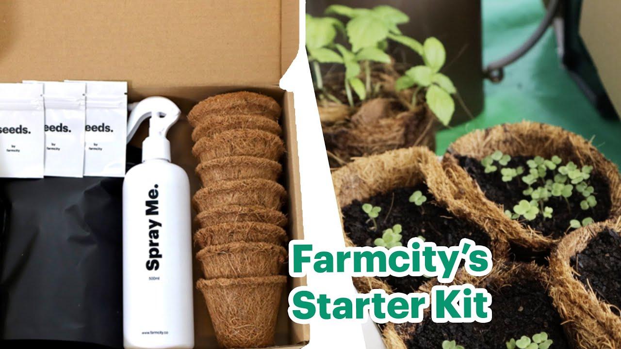 Farmcity Starter Kit