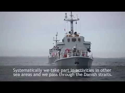 Polish Navy minesweepers