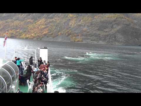 Fjord tour in Flåm - Norway