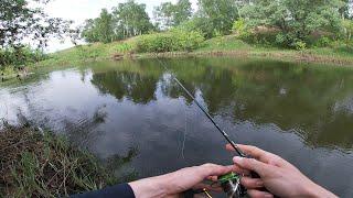 Надо ВИДЕТЬ БЕЗОТКАЗНАЯ ПРИМАНКА ДЛЯ ГОЛАВЛЯ РЫБЫ РВУТ СПИННИНГ ИЗ РУК Рыбалка летом