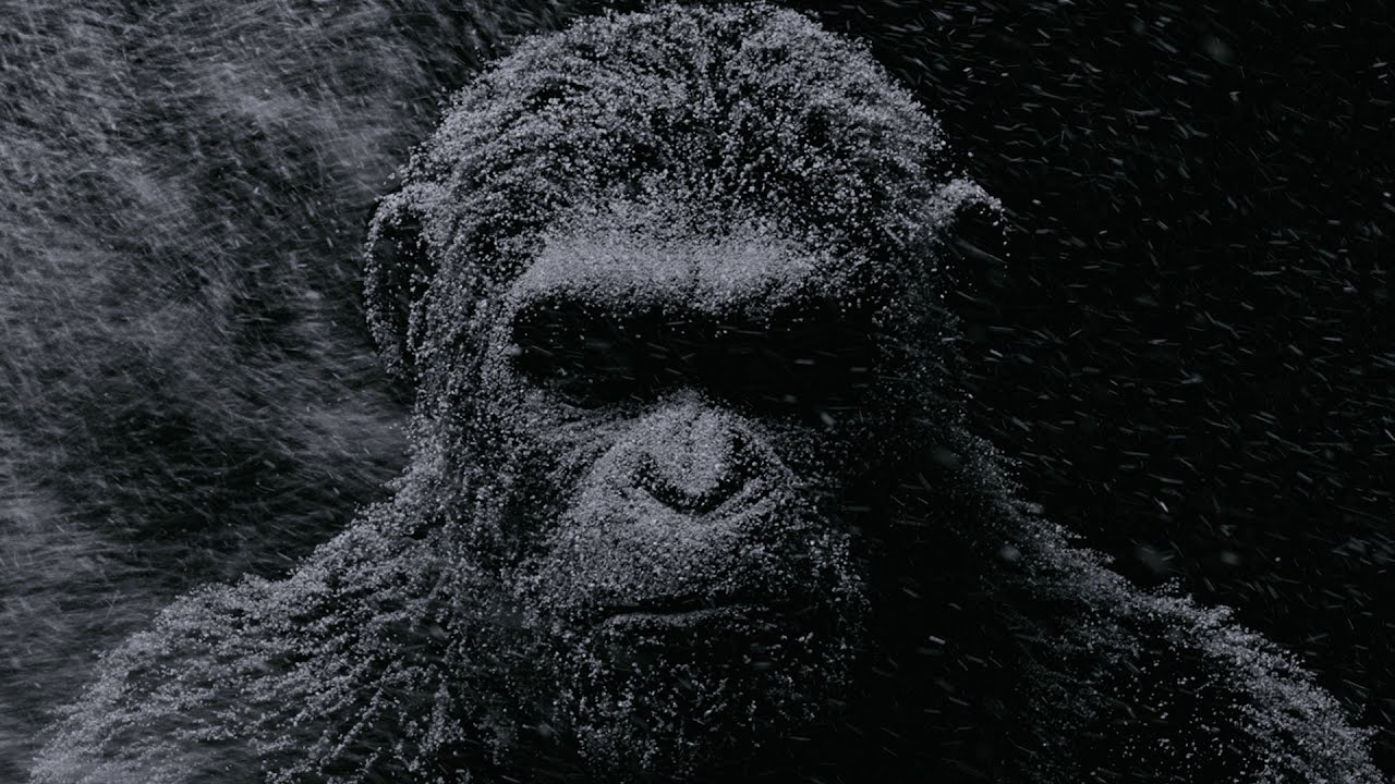 Image result for war in the planet of the apes